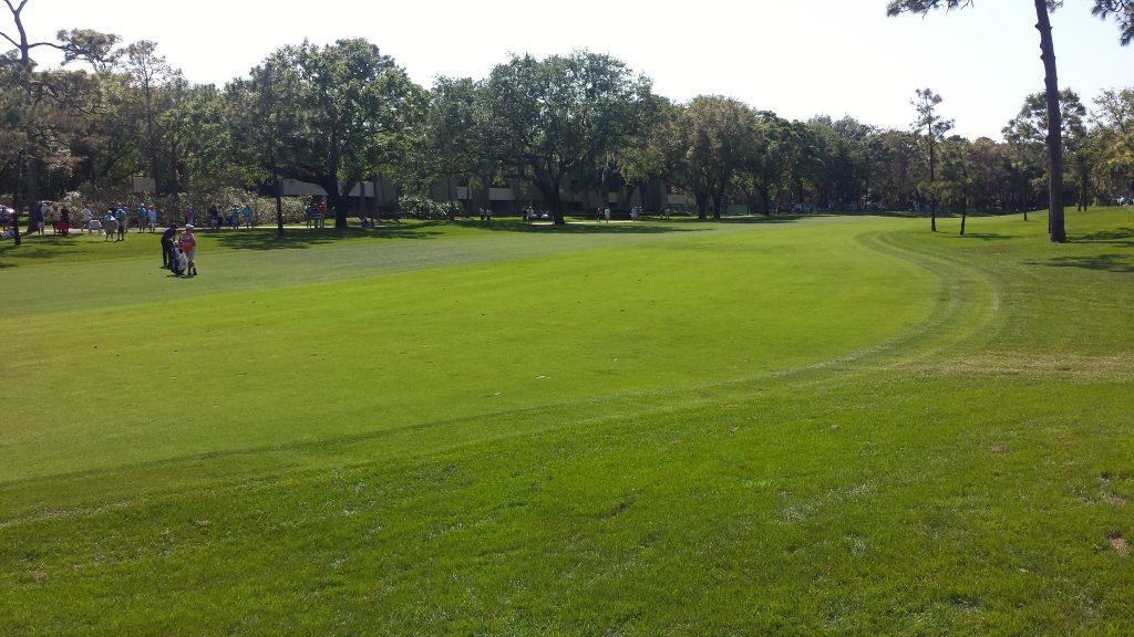 Concierge Golf Ireland |Copperhead Innisbrook Golf Resort