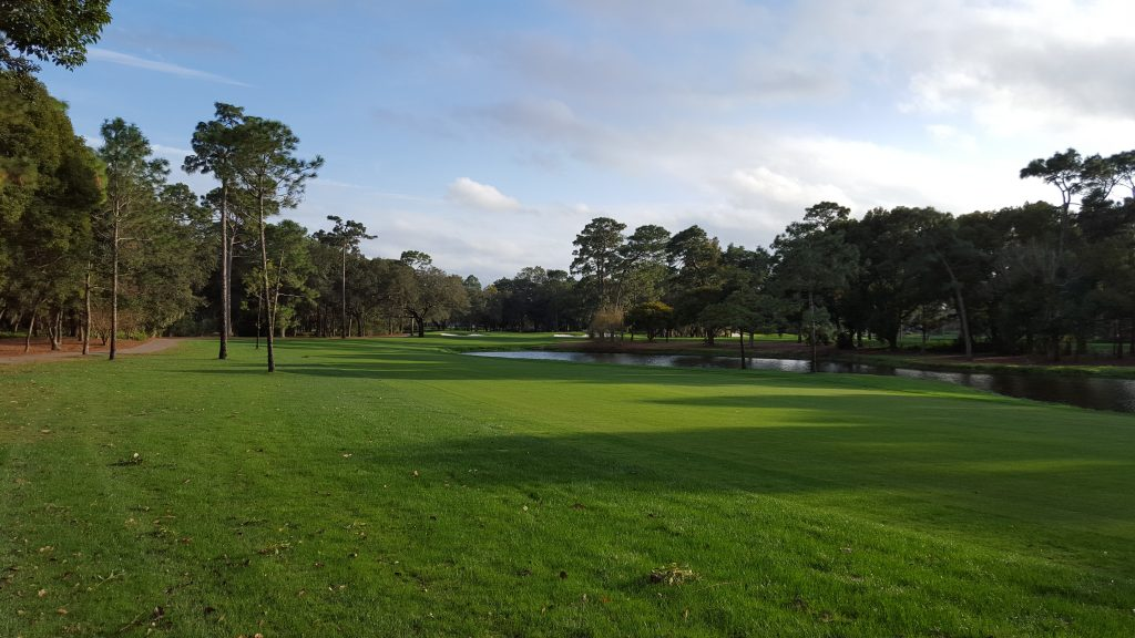Concierge Golf Ireland   Copperhead Innisbrook Golf Resort